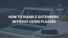 How to disable Gutenberg without using plugins