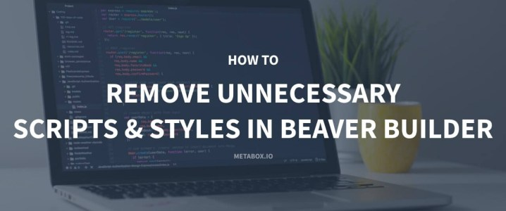 How to Remove Unnecessary Scripts and Styles in Beaver Builder