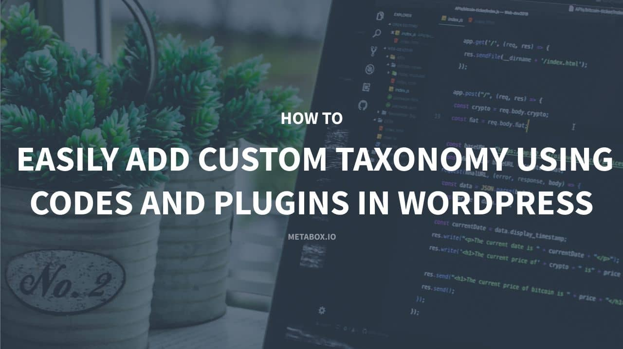 How to easily add custom Taxonomy using codes and plugins in