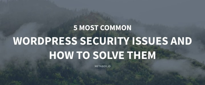 5 Most Common WordPress Security Issues and How to Solve Them