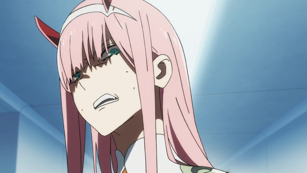 Darling-in-the-FranXX-zero two vs ichigo-2