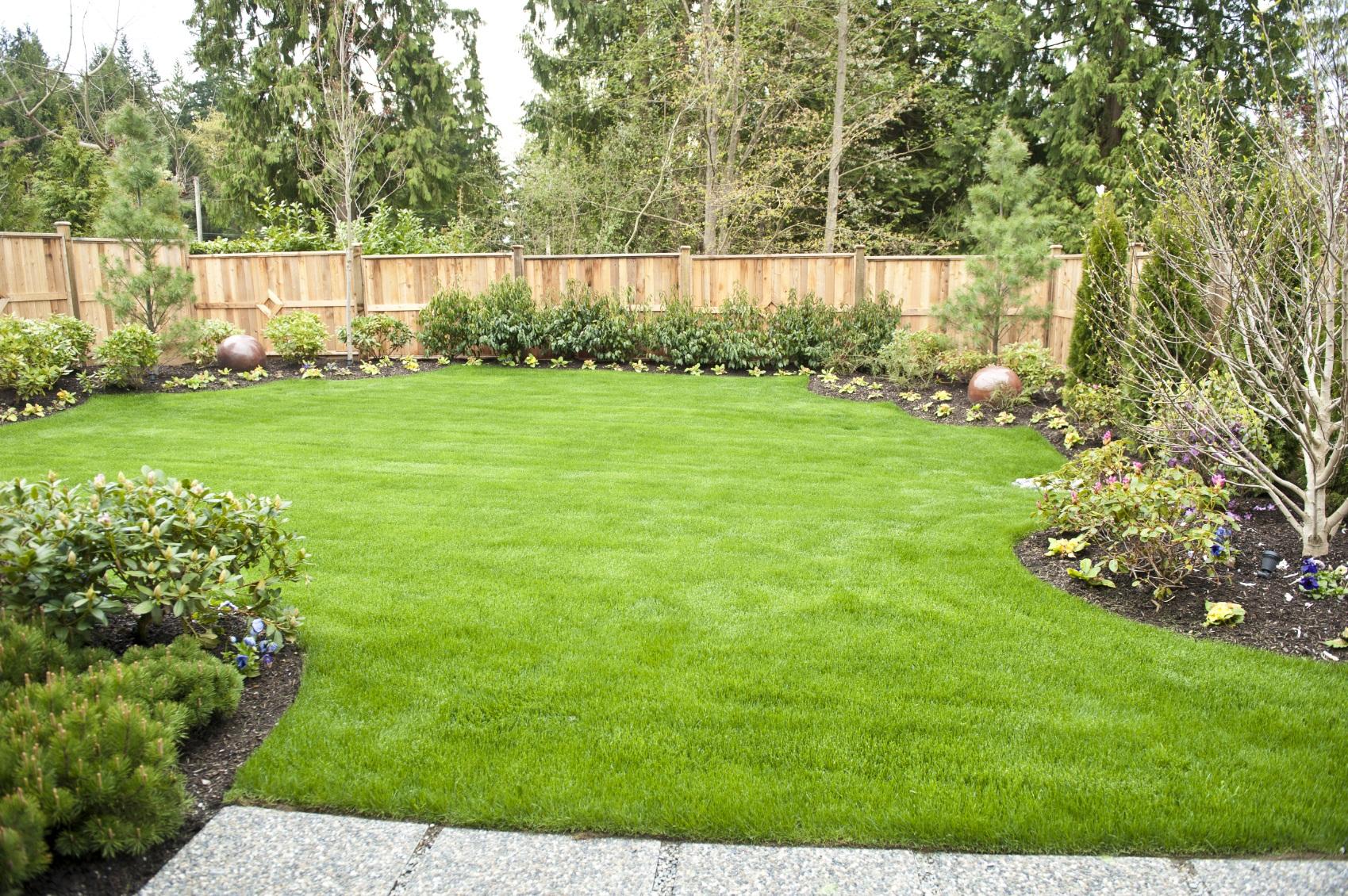 Backyard Landscaping Tips | Metamorphosis Landscape Design on Easy Back Garden Ideas id=14632