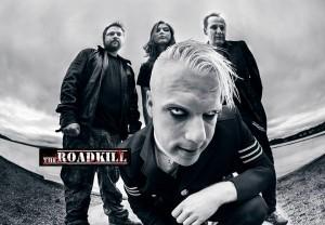 roadkill2 Ameli Jakobsen