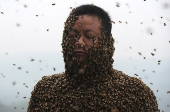 She Ping, a 34 year-old beekeeper, covered with a swarm of bees on a small hill in southwest China's Chongqing municipality on April 9, 2014. Ping released more than 460,000 bees, using queen bees to attract them to his body, and made himself a suit of bees that weighed 45.65kg (100 pounds) within 40 minutes. (AFP/Getty Images)