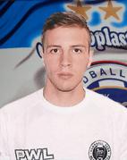 Marinović Milan