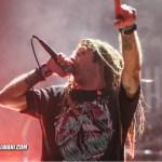 LambOfGod.DTE .May 19.Anthony Sheardown 9 wm wmsmall - GALLERY: Slayer, Lamb Of God, Cannibal Corpse & Amon Amarth Live at DTE Energy Theatre, MI