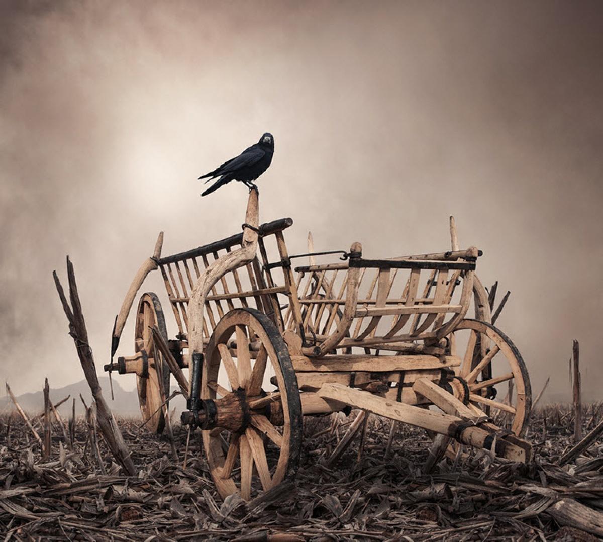 Reflexão: A Carroça Vazia