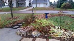 fall garden bird food