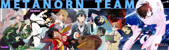 Metanorn Team 2014