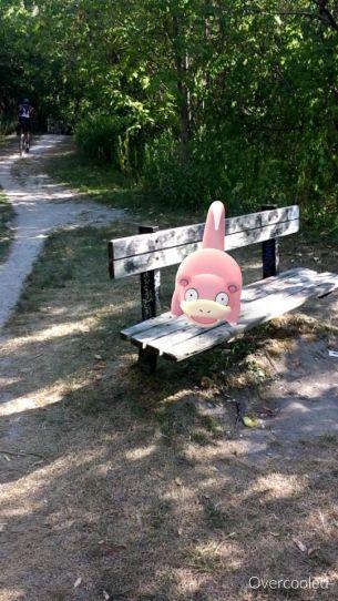 pokemon go 5006