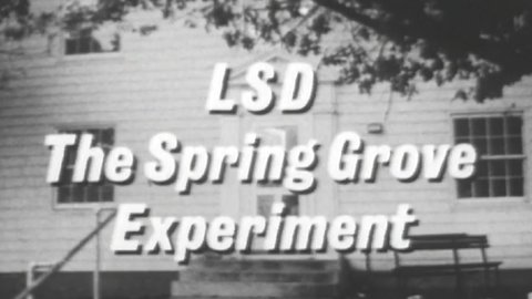 LSD: The Spring Grove Experiments (1965)