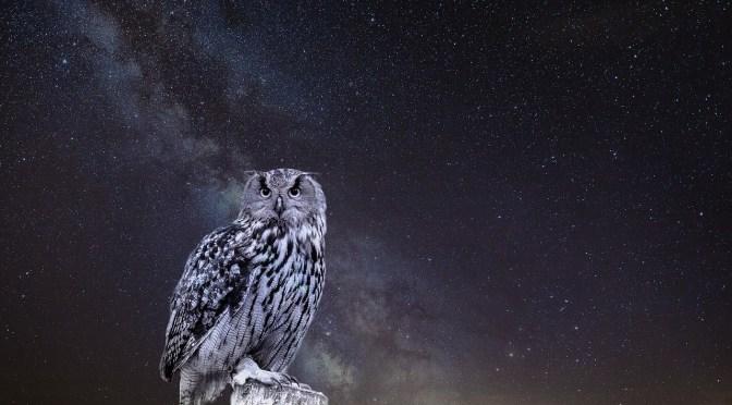 次元ジャンプの方法 永遠のフクロウ The Owls of Eternity