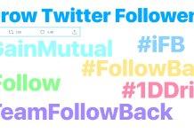 Gain Twitter Followers 1DDrive