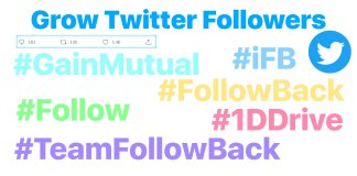 Gain Twitter Followers 1DDrive