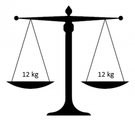 another set of scales with 12 kilograms on both sides