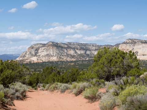 The land around Red Knoll near Kanab, UT that could have been razed for a frac sand mine. Photo by Tara Lohan