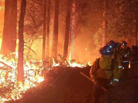 A fire crew battles the Zogg Fire on October 2, 2020. (Photo: California Conservation Corps/Wikimedia Commons)