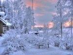Investigadores finlandeses analizan la influencia del cambio climático en la naturaleza
