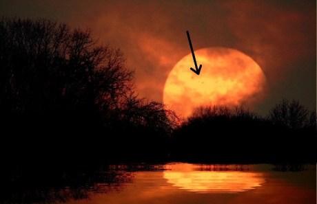 VegaStar-Carpentier-Big-Sunspots-AR1654-1652-at-Sunset-VegaStar-Carpentier-01.13.2013_1358118374_lg