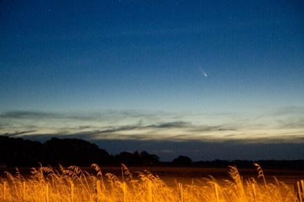 Foto: Michael White, cometa visto el 1 de marzo desde Nueva Zelanda