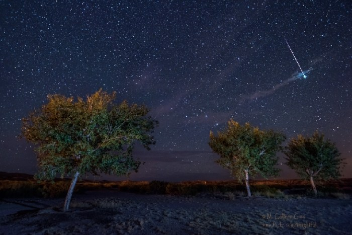 M.-Colleen-Gino-160728meteor-brighter_1469721702_lg