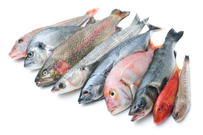Comer pescado será un peligro si sigue en aumento las temperaturas del planeta