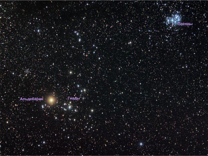 Kenapa saya ingin melihat rasi bintang Taurus. Rasi bintang Taurus. Bintang- bintang yang tidak biasa dari rasi bintang Taurus