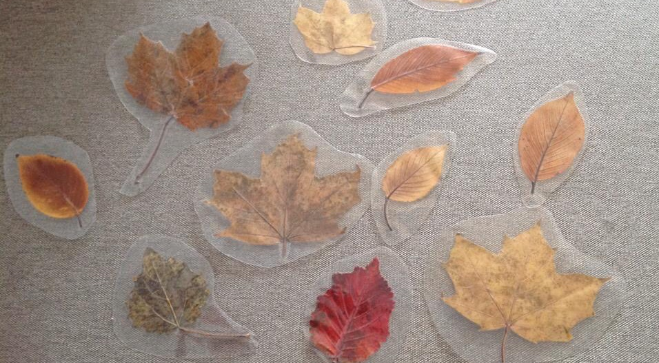 Craft based toddler group activities- leaf rubbing