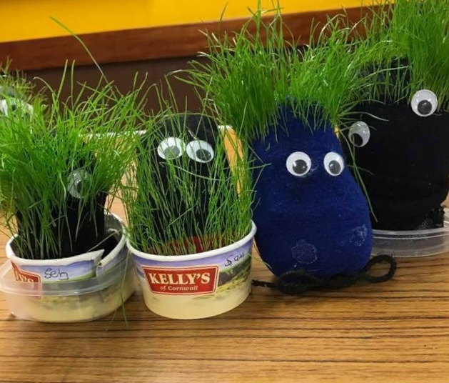 Grass heads - Nature Based Toddler Group Activities