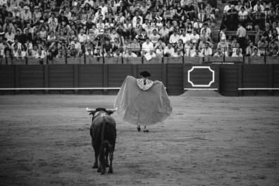Seville Bull Fighting-21