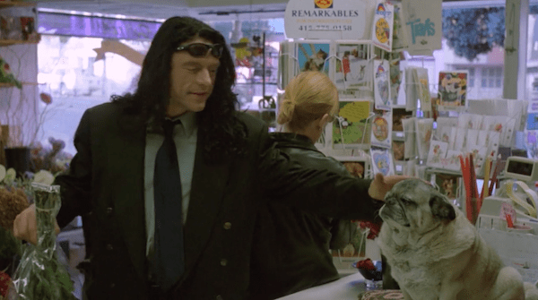 nice doggy scene from the room