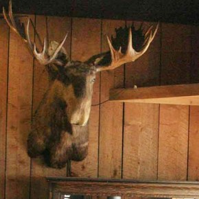 Twisp's storied Antlers Saloon closes its doors