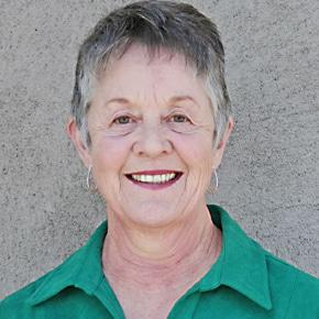 Paula Stokes