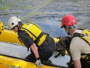 Jessie is eager to leave the raft and be back on solid ground. Photo by Don Nelson