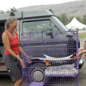 Methow Valley Veterinary Hospital employees Melinda Oakley,left, and Cassandra Krunnies moved animals and cages out of the clinic as a precaution during the Rising Eagle Road Fire. Photo by Ann McCreary