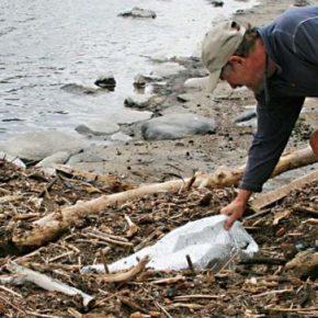 Volunteers, agencies team up to clear slide debris from river