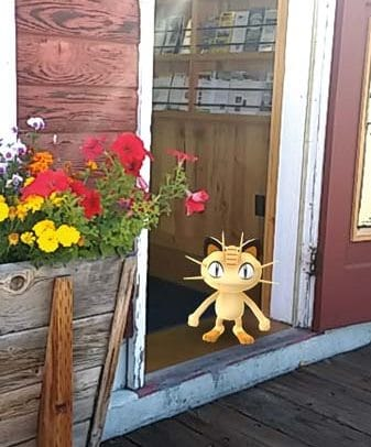 Photo by Darla Hussey Meowth, a small feline-type Pokemon, was spotted checking out the Winthrop Visitor Information Center.