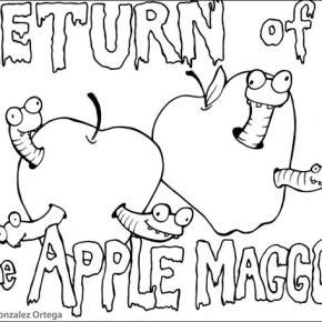 Apple Maggot