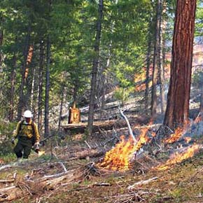 Legislation aims to increase prescribed burning in Washington