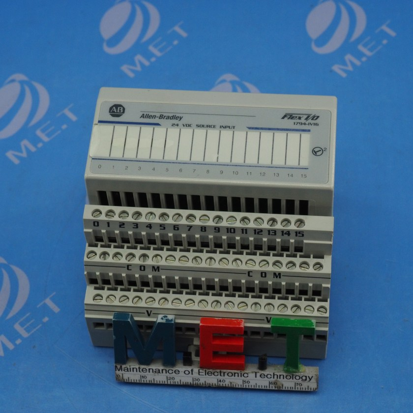 PLC0369 (3).JPG