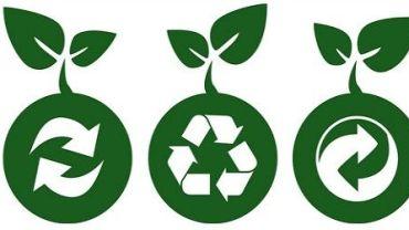 5 reflexiones ambientales antes de comprar un producto