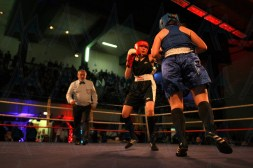 The Shock Fight 2018 (16)