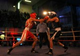 The Shock Fight 2018 (18)