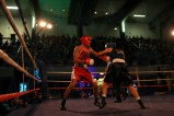 The Shock Fight 2018 (19)