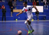 Pays Voironnais Futsal - Espoir Futsal 38 (35)