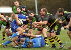 US Jarrrie Champ Rugby - Chartreuse RC (87)