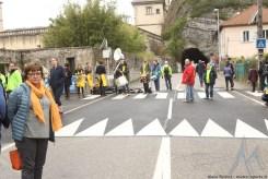 Grenoble - Vizille 2019 (63)