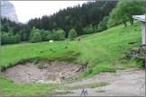 Trail Dent de Crolles2019_3664