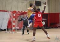 GSMH38 - Sarrebourg Handball (37)