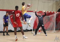 GSMH38 - Sarrebourg Handball (38)